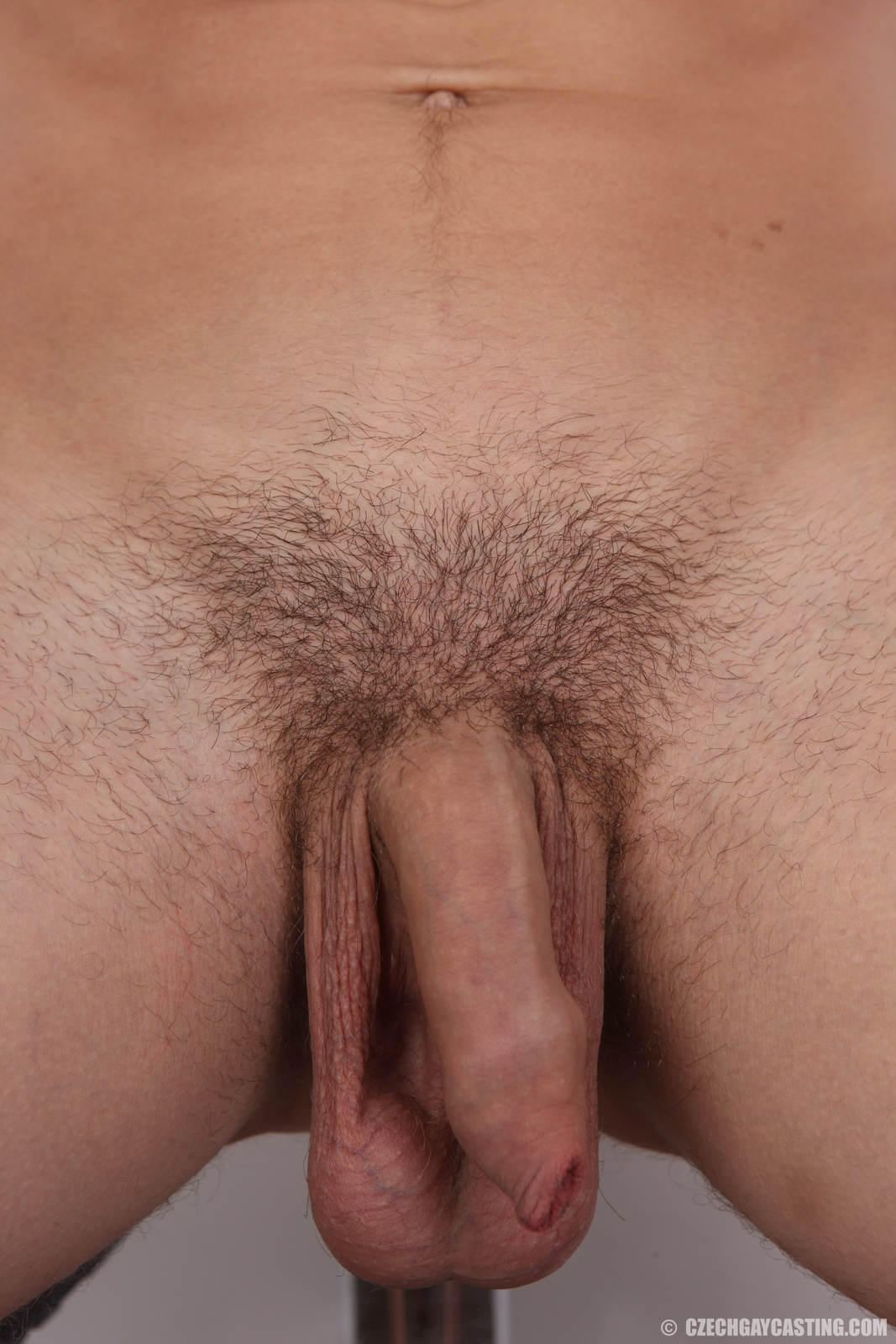 Gay Uncut Cocks 43