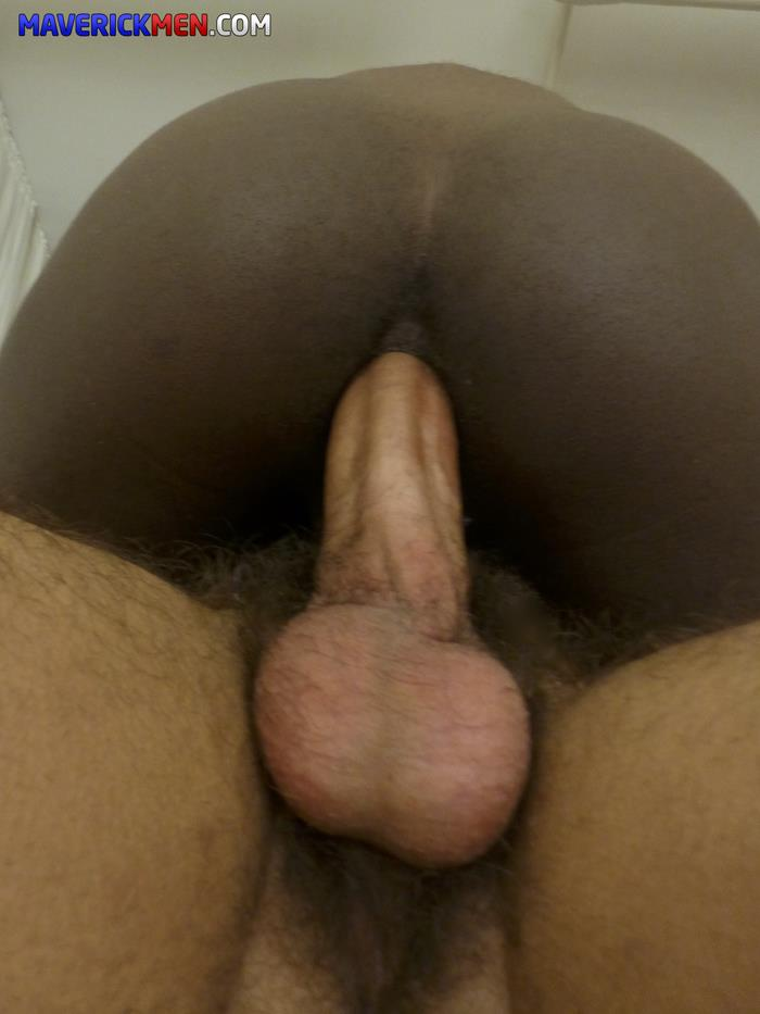 amateur dp black