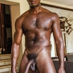Lucas Entertainment Sean Xavier and Mark Edwin Interracial Bareback Big Black Dick Amateur Gay Porn 26 150x150 Getting Fucked Bareback By Sean Xaviers Big Black Cock